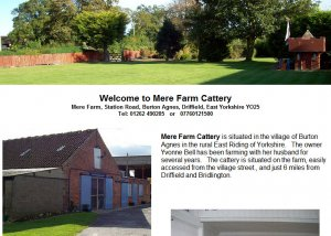 Mere Farm Cattery is situated in the village of Burton Agnes in the rural East Riding of Yorkshire.